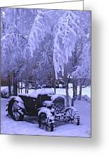 Frozen Beauty Greeting Card