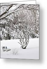 Winter Bench Greeting Card by Frederico Borges