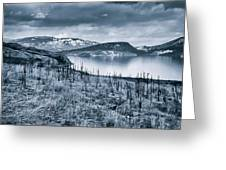Winter Blues Greeting Card by Rod Sterling