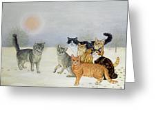 Winter Cats Greeting Card by Ditz
