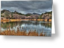 Winter Cattails By The Lake Greeting Card