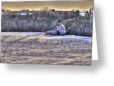 Winter Charm Greeting Card