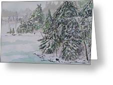 Winter Chill St Lawrence River Greeting Card