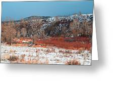 Winter Colors 2 Greeting Card