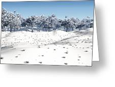 Winter Coppice Greeting Card