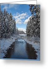 Winter Creek Greeting Card by Fran Riley