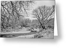 Winter Creek In Black And White Greeting Card
