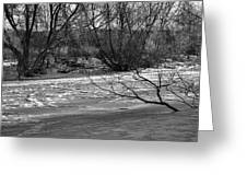 winter day BW-Black and white presentation of Snow on a frozen creek south  Greeting Card