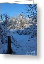 Winter Day II Greeting Card