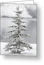Winter Decor Greeting Card