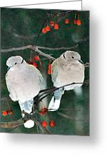 Winter Doves Greeting Card
