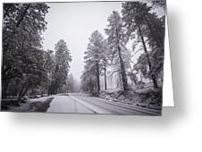 Winter Driven Greeting Card