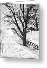 Winter Driveway Greeting Card