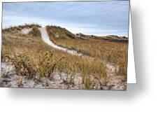 Winter Dune Greeting Card