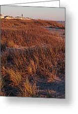 Winter Dunes Iv Greeting Card