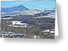 Winter Evening Aspen Greeting Card