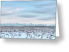 Winter Farm Field Greeting Card