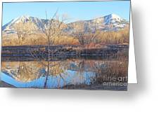 Winter Feb 2015 Colorado Greeting Card