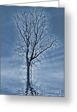 Winter Floods Greeting Card