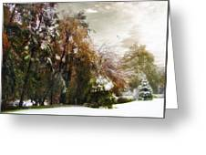 Winter Foliage Greeting Card