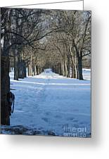 Winter Foot Prints Greeting Card