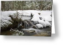 Winter Forest - Lincoln New Hampshire Usa Greeting Card