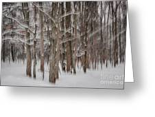 Winter Forest Abstract II Greeting Card