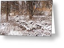 Winter Forest Panorama Greeting Card