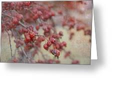 Winter Fruit Greeting Card