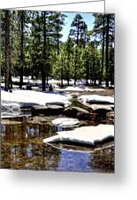 Winter Gives Way To Spring 32626 Greeting Card