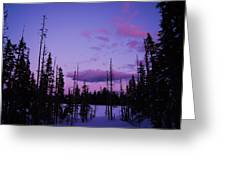 Winter Glow Greeting Card by Angi Parks