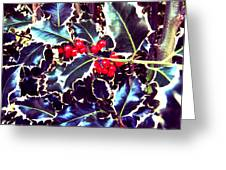 Winter Holly Greeting Card
