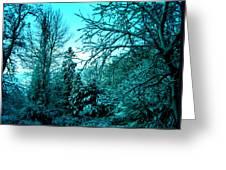 Winter In Denmark Greeting Card