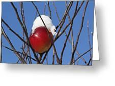 Winter In Europe Greeting Card