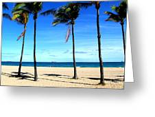 Winter In Florida Greeting Card