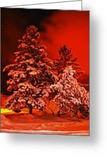 Winter In Minneapolis Greeting Card