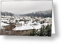 Winter In Residential Suburban City Greeting Card