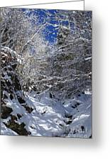 winter in the Bavarian alps 2 Greeting Card