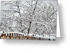 Winter In The Heartland 1 Greeting Card