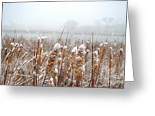 Winter In The Heartland 6 Greeting Card