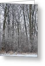 Winter In The Heartland 8 Greeting Card