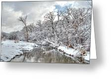 Winter In The Heartland 9 Greeting Card