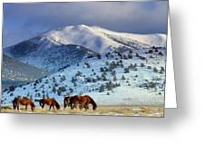 Winter In The High Desert  Greeting Card by Jeanne  Bencich-Nations