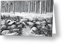 Winter Is Here Greeting Card
