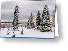 Fabulous Winter. Greeting Card
