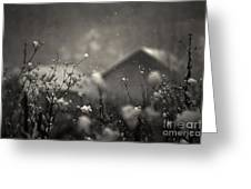 Winter Landscape With Snow Falling And Plants Greeting Card