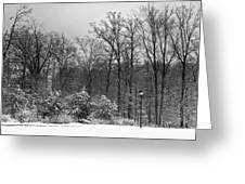 Winter Light Post Greeting Card