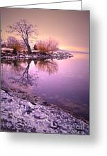 Winter Light Reflected Greeting Card