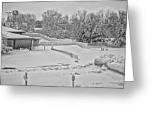 Winter Lines Black And White Greeting Card