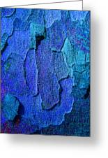 Winter London Plane Tree Abstract 4 Greeting Card
